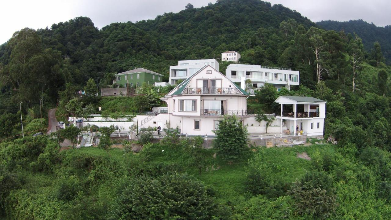 Отель типа «постель и завтрак»  Mount Villa Kvariati