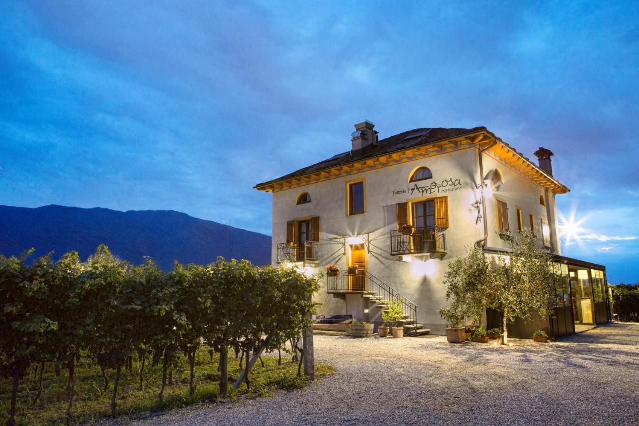 Отель  Fattoria l'Amorosa  - отзывы Booking