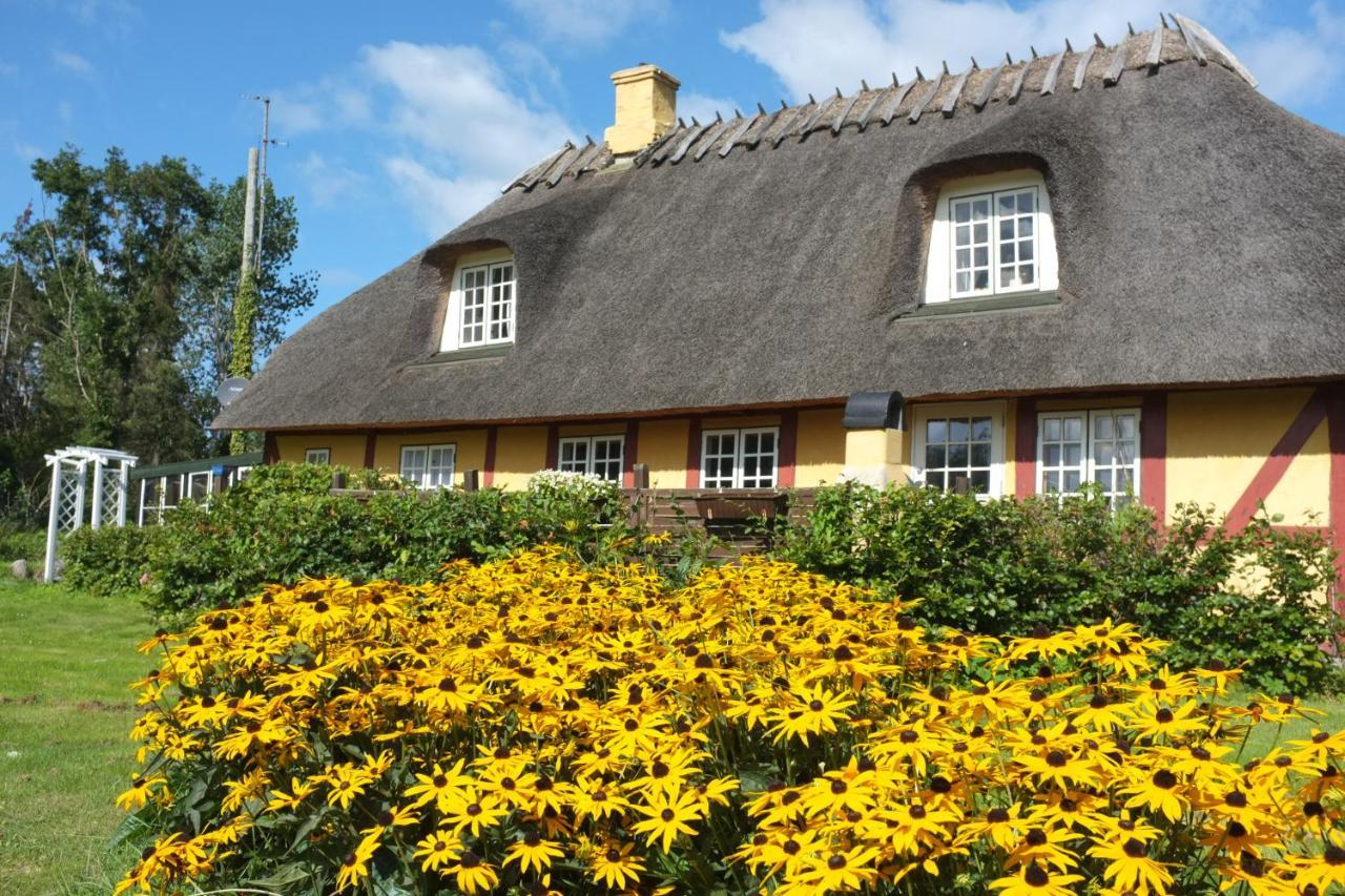 Дом для отпуска  Langeland Holiday House