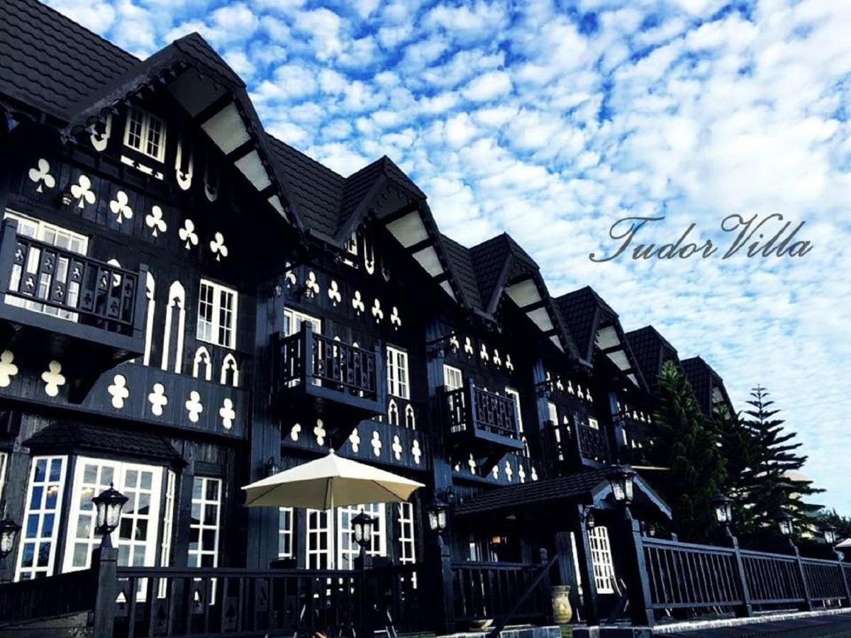 Проживание в семье  Tudor Dynasty Homestay