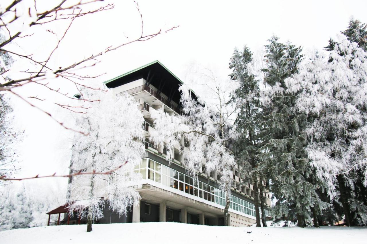Отель  Hotel Medlov