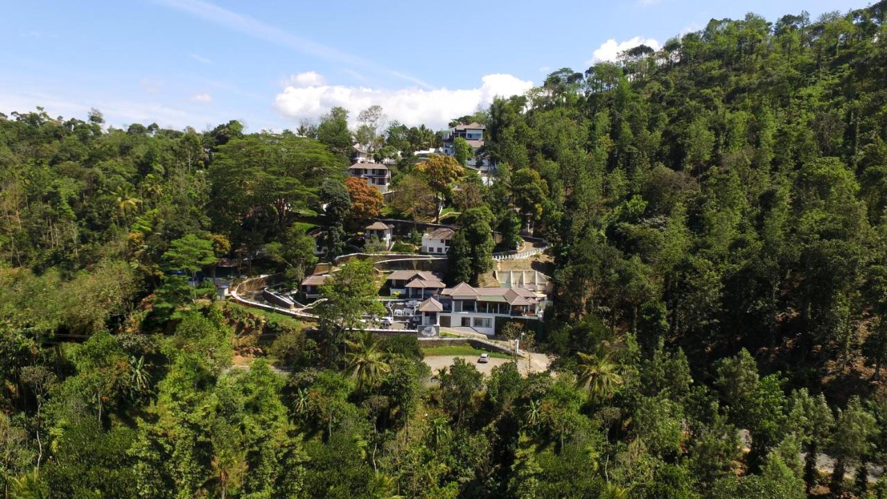 Курортный отель  Forest Canopy