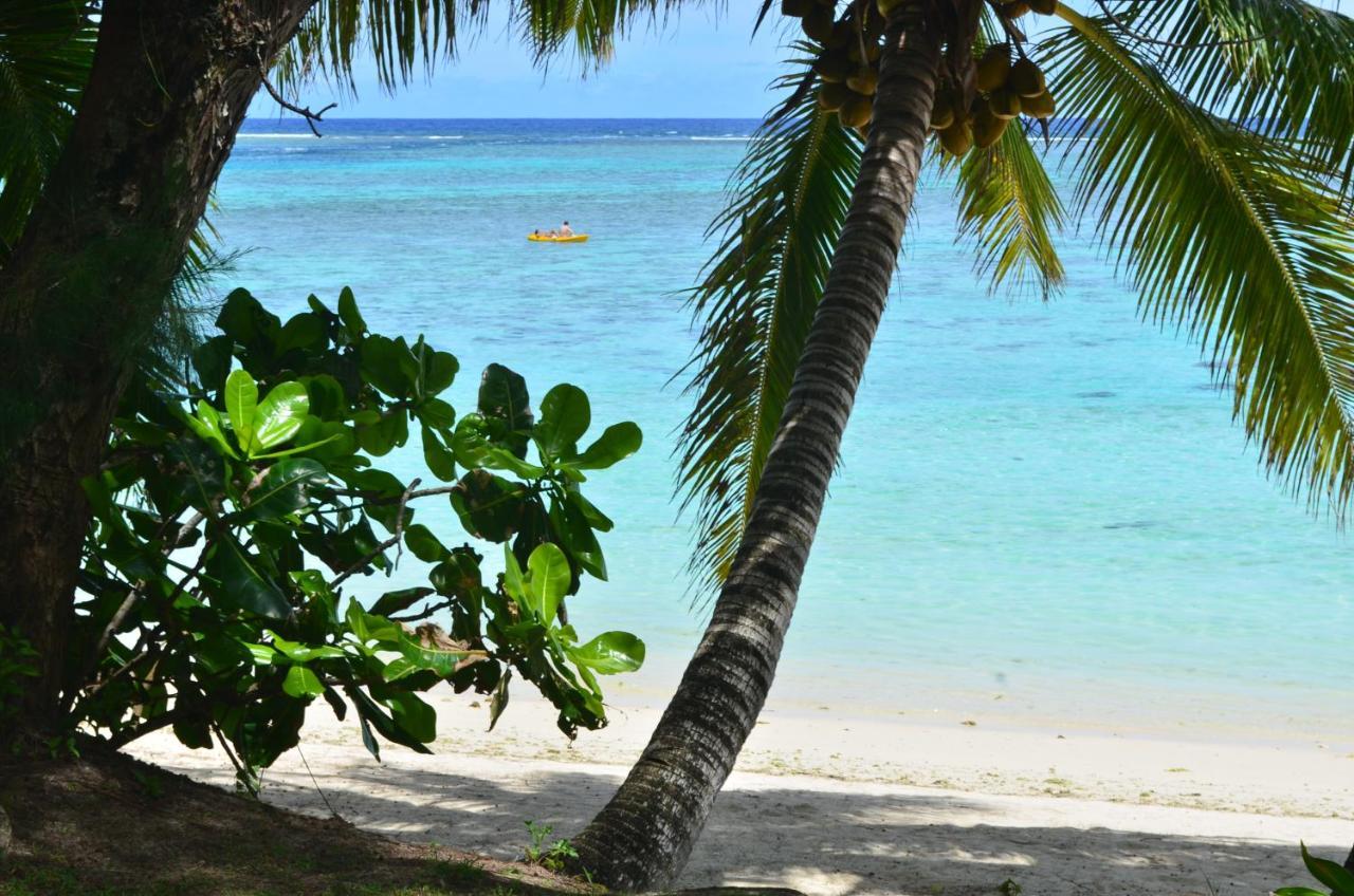 Дом для отпуска  Natura Beach Bungalow  - отзывы Booking