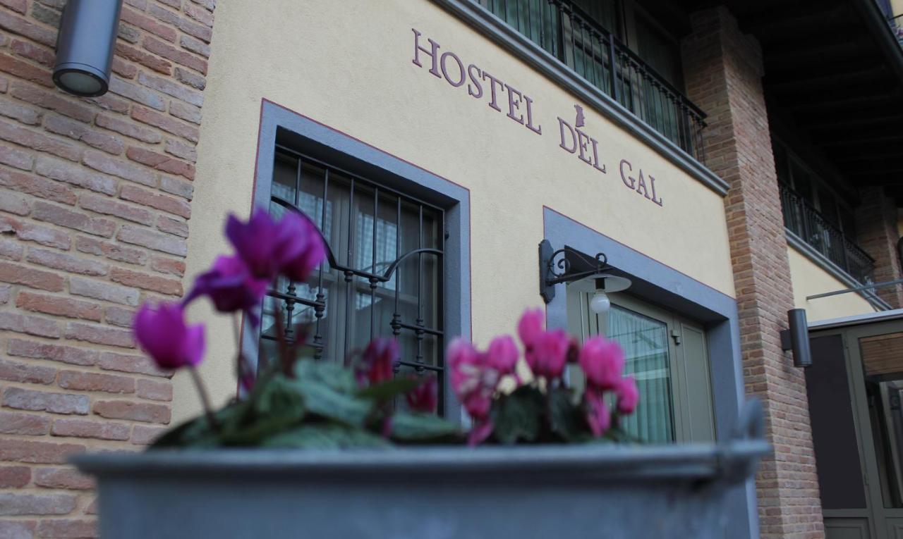 Апартаменты/квартиры  Hostel Del Gal