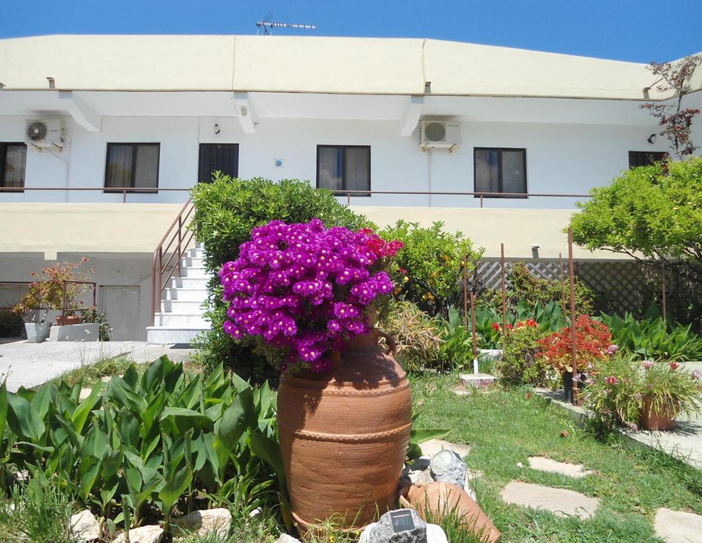 Апарт-отель  Evi Apartments And Studios