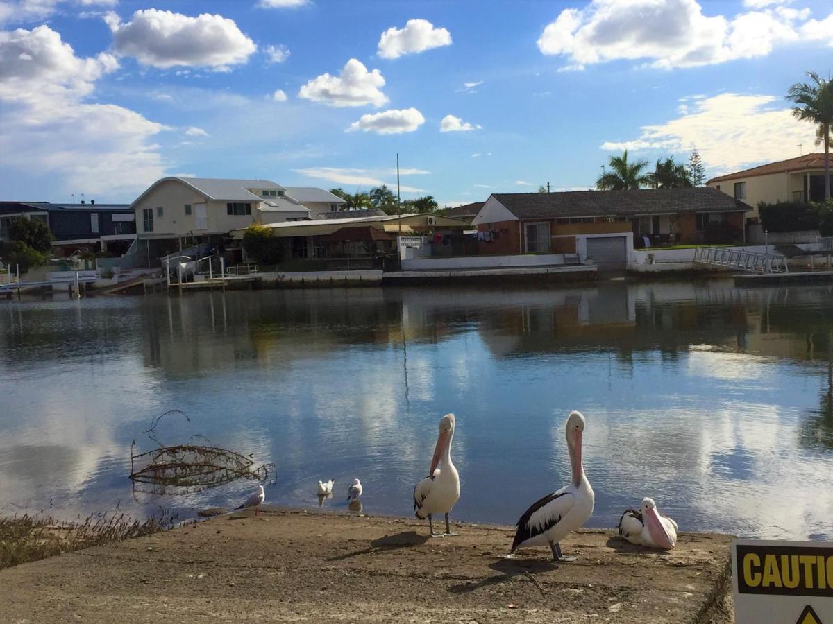 Курортный отель  Pelican Cove Apartments  - отзывы Booking