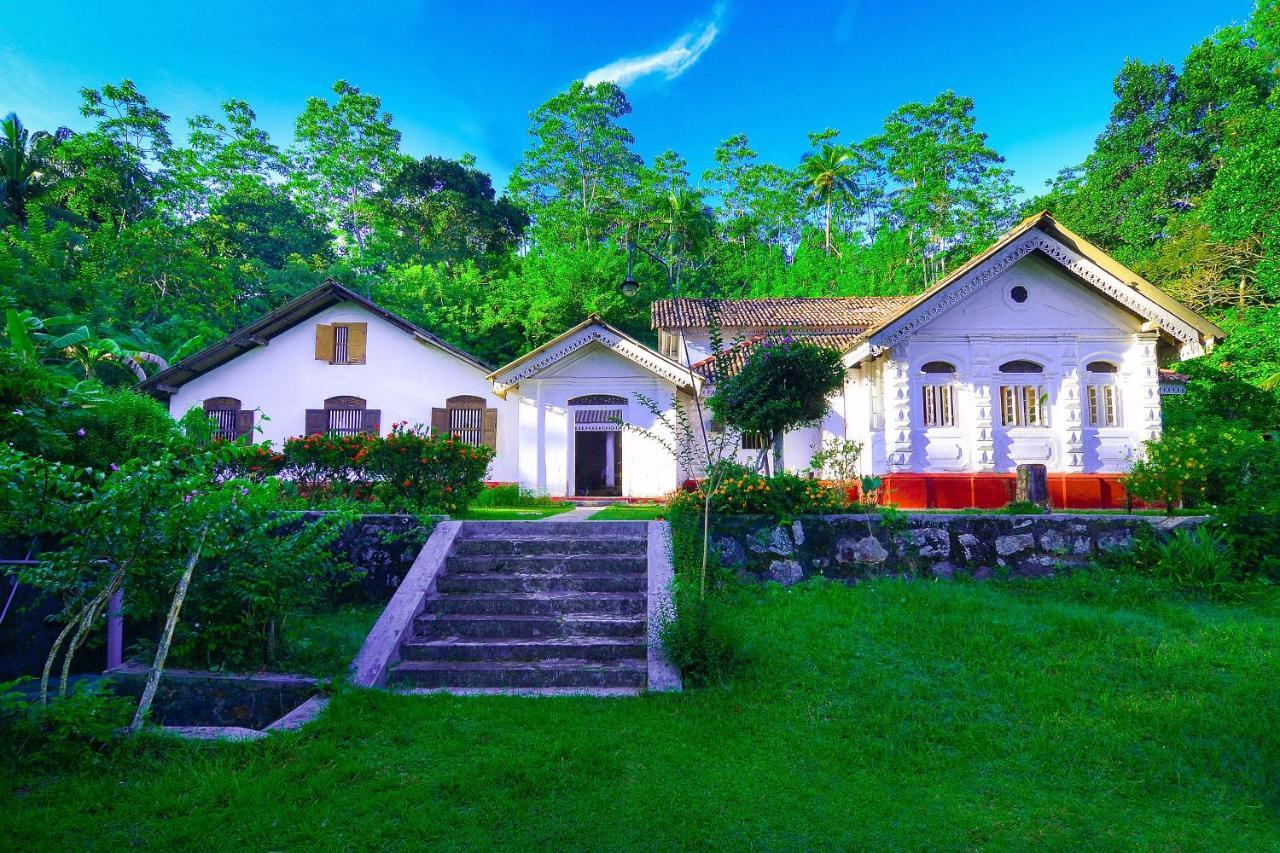 Вилла  Villa Januli  - отзывы Booking
