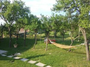 Zahrada ubytování Penzion Schwarzava