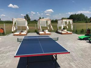 Facilități de tenis de masă la sau în apropiere de Hanul Lui Bogdan