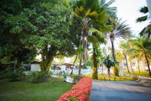 A garden outside Aipana Plaza Hotel