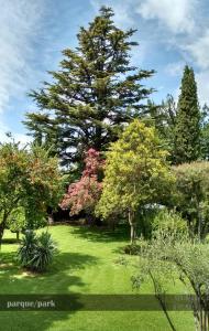 A garden outside Quinta Ugarte