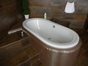 Koupelna v ubytování Hotel Zelený Strom