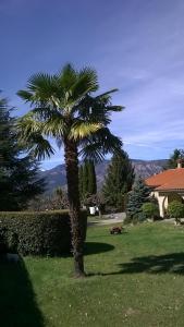 A garden outside Canigou Lodge