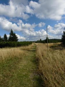 Naturlandschaft in der Nähe der Pension