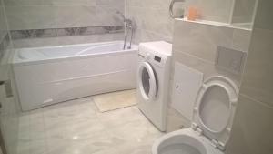A bathroom at Apartment on Lytkina 9/6