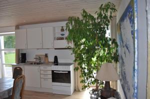 Køkken eller tekøkken på Koebenhovedskov Bed & Breakfast