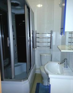 A bathroom at Usadba u Olgi Holiday Home