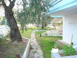 A garden outside Panagiotis Hotel