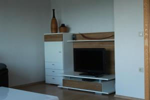 A television and/or entertainment centre at Apartment Luka