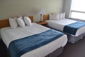 A bed or beds in a room at Absaroka Lodge