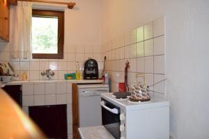A kitchen or kitchenette at Villa Kabasanov