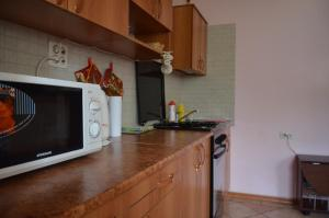 Кухня или мини-кухня в Гостевой Дом у Марины
