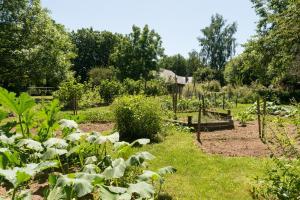 A garden outside Les écureuils