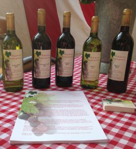 Drankjes bij Wijnhoeve Koningbosch