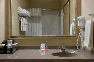 A bathroom at Ramada by Wyndham Drumheller Hotel & Suites