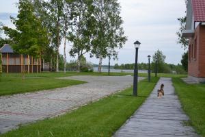 Сад в Кемский берег