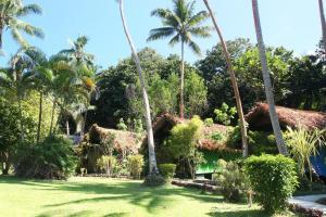A garden outside Mango Bay Resort
