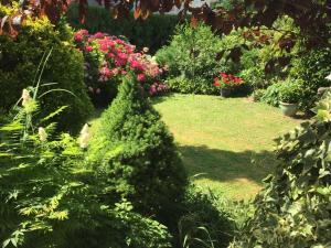 Jardin de l'établissement La Vy Bochenay