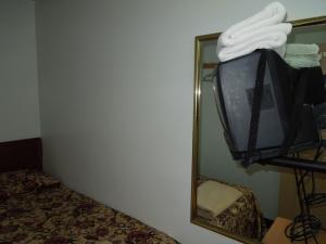 TV o dispositivi per l'intrattenimento presso World Hotel