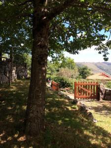 A garden outside Casa da Branda St.António