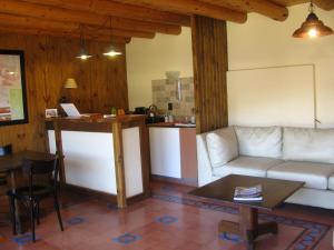 Un lugar para sentarse en Patagonicus