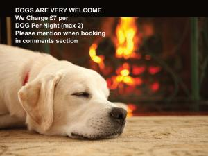 Pet or pets staying with guests at The Watermill Inn & Brewery