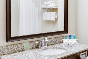 A bathroom at Holiday Inn Express & Suites Nevada