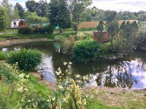 A garden outside Deeside Holiday Park
