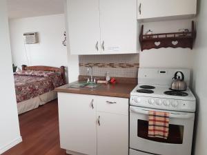 A kitchen or kitchenette at Flamingo Motel