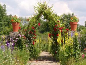 Zahrada ubytování Chateau Třebešice
