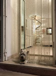 Ospiti di Casa Del Marchese con animali domestici