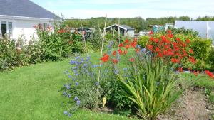 A garden outside Inishfree Bed and Breakfast