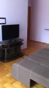 A television and/or entertainment center at Galytska Apartment