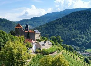 A bird's-eye view of Schloss Eberstein