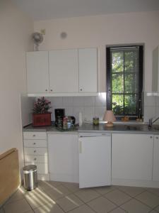 Küche/Küchenzeile in der Unterkunft Altes Zollhaus am Klinikum