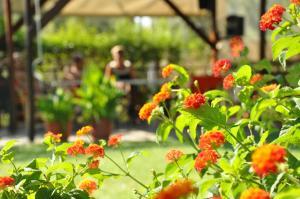 Jardin de l'établissement Villa Annilena