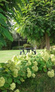 Een tuin van Halte 10 Apartment