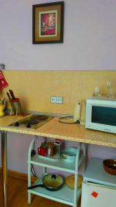 Кухня или мини-кухня в Апартаменты на Ленина 26