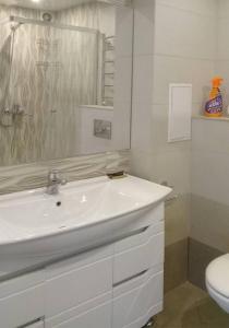 A bathroom at Apartment on Litovskii Val