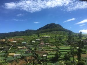A bird's-eye view of Perera Homestay